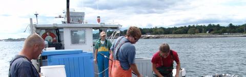 students conducting smsoe aquaculture harvesting