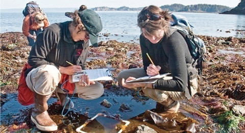 Two students examine a tide pool on the New Hampshire coast as part of a NH Sea Grant marine education program.