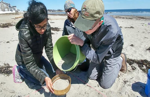 Three people sift sand on a New Hampshire beach as part of the NH Sea Grant College Program.