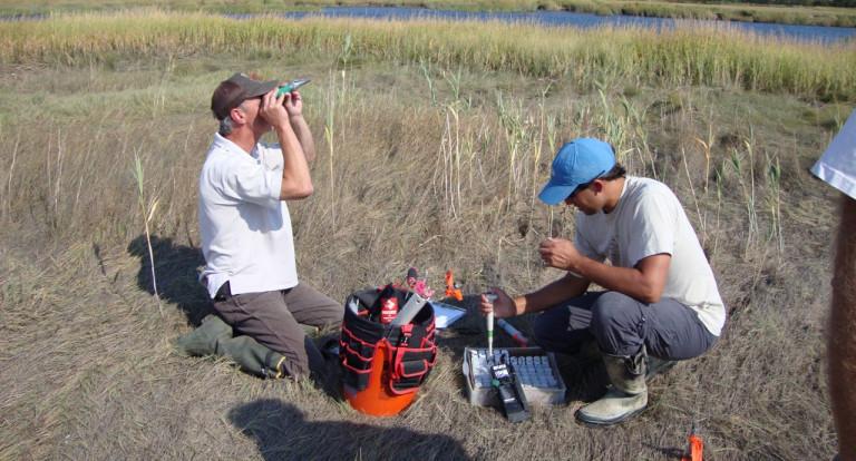 tidal marsh water sampling