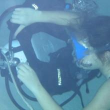 Diving Program 4
