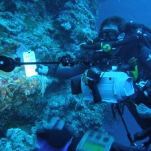 Divers collecting data