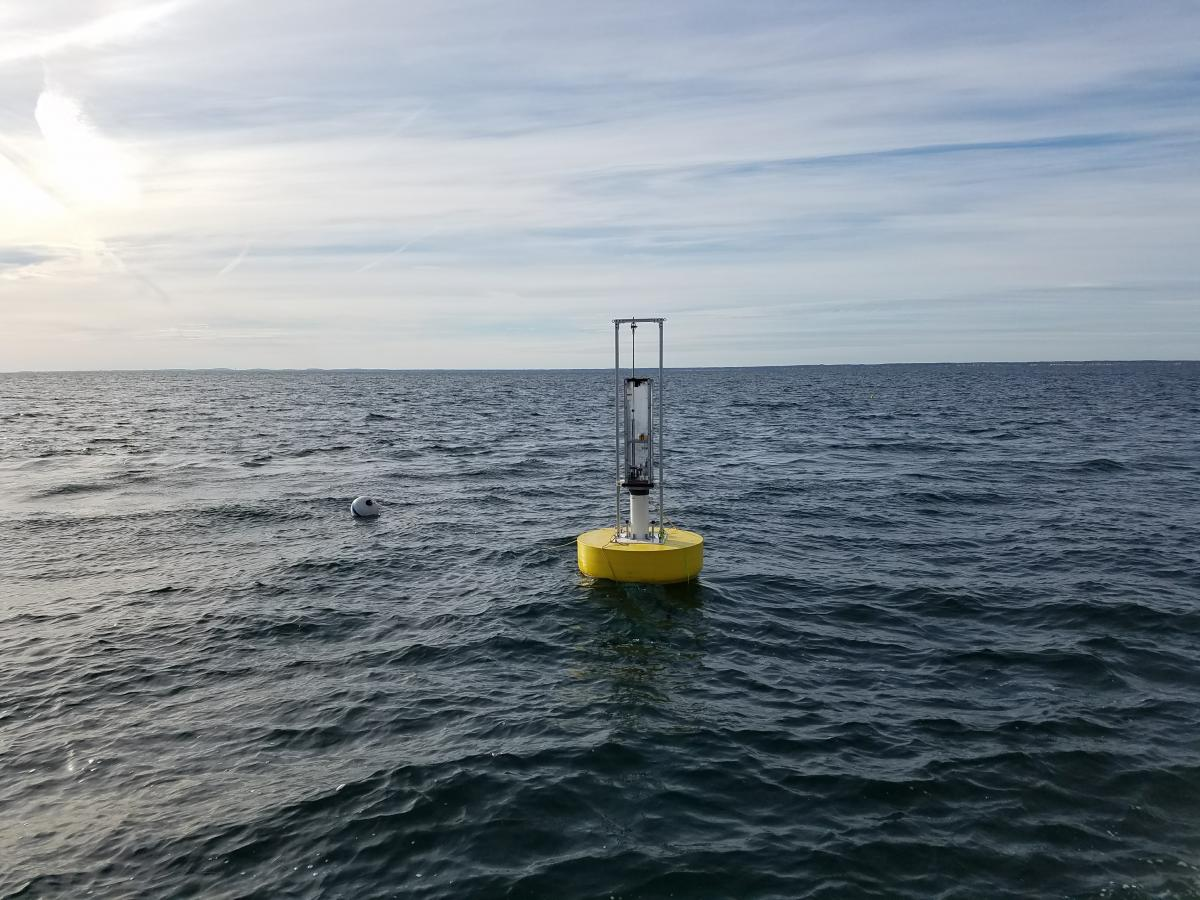 Wave Energy Buoy deployed off of the Isles of Shoals